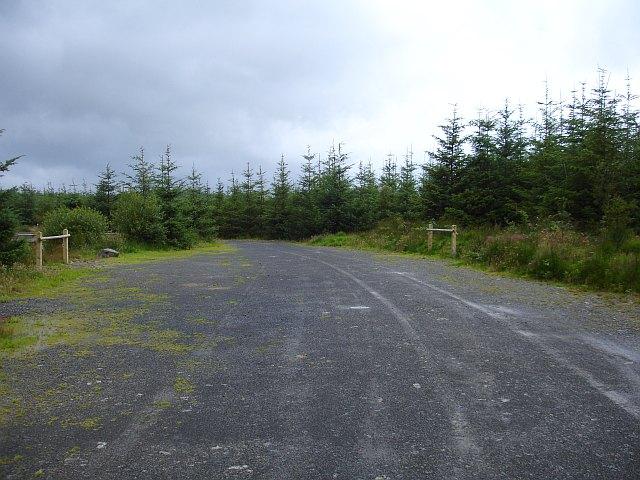 Pen y Ffordd, Dyfnant Forest