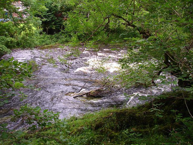 River Vyrnwy, Pont Llogel