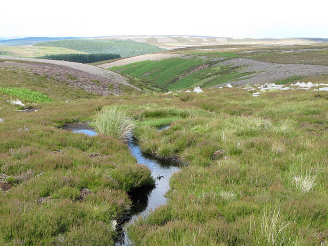 Tributary of Norham Burn