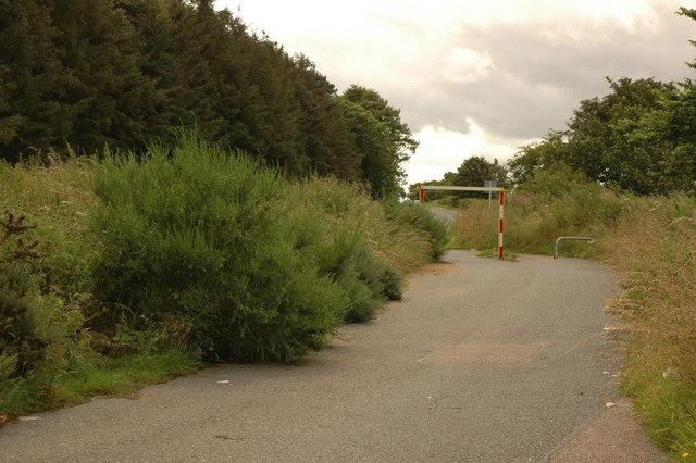 Overgrown Parking area