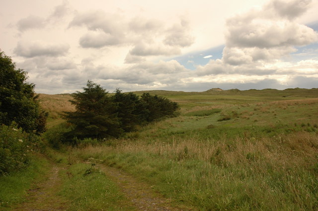 Looking toward Forvie National Nature Reserve