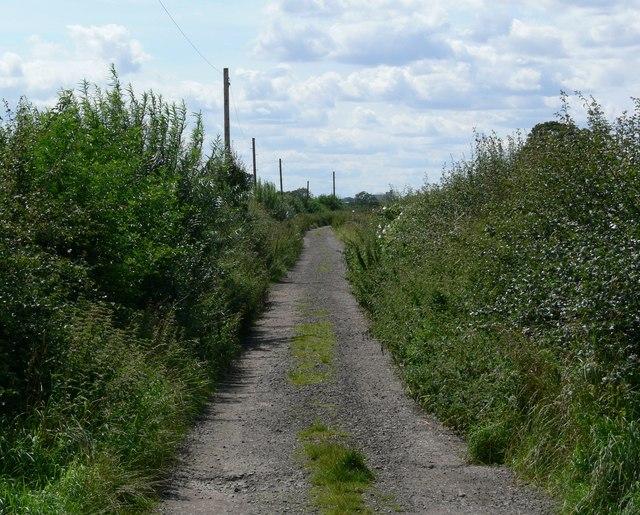 Track to Lodge Farm