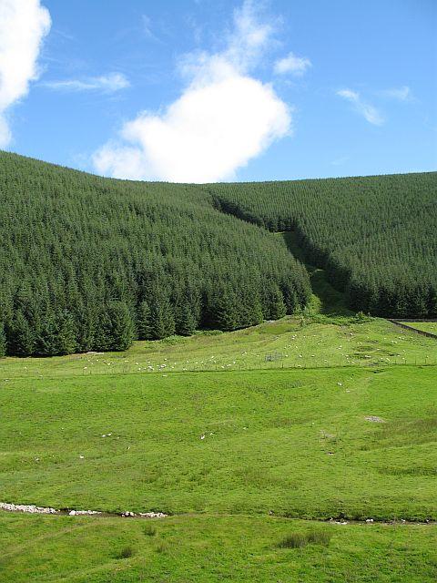 Polmood Hill