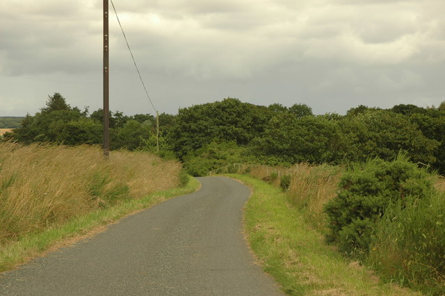 Country road at Tarty