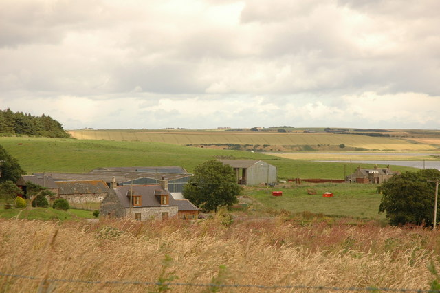 Fields and farm at Meikle Tarty