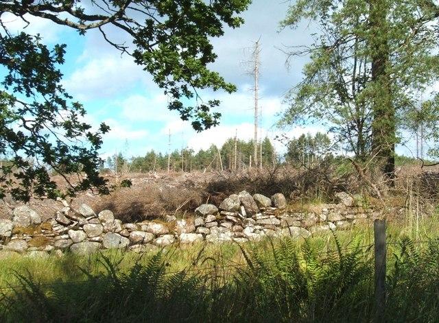 Original boundary wall