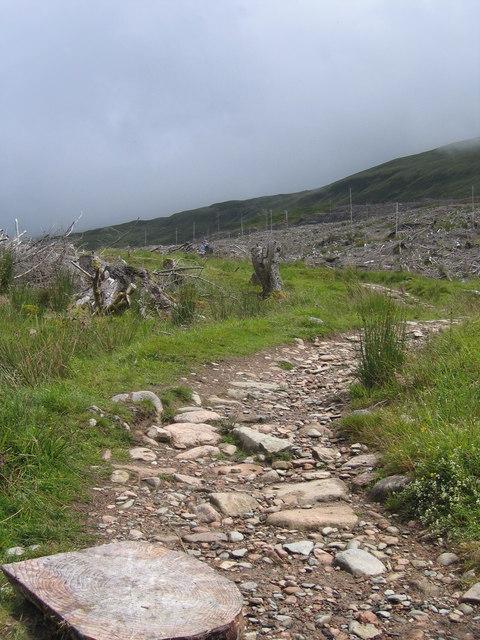 Path through Forestry Commission plantation near the Allt Coire a' Mhuilinn