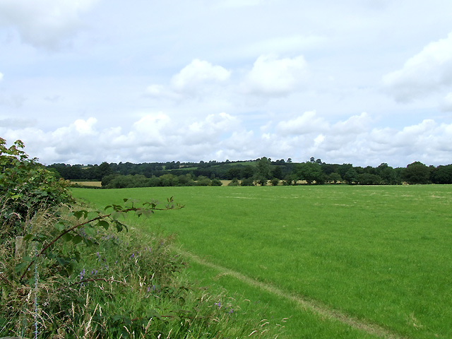 Farmland near the Afon Teifi, Ceredigion