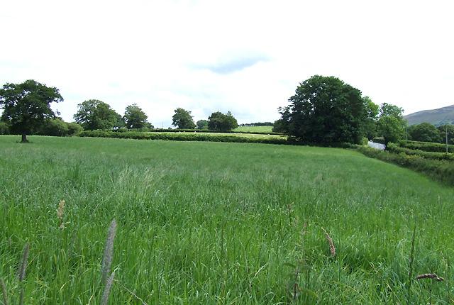 Farmland near Pont Llanio, Ceredigion