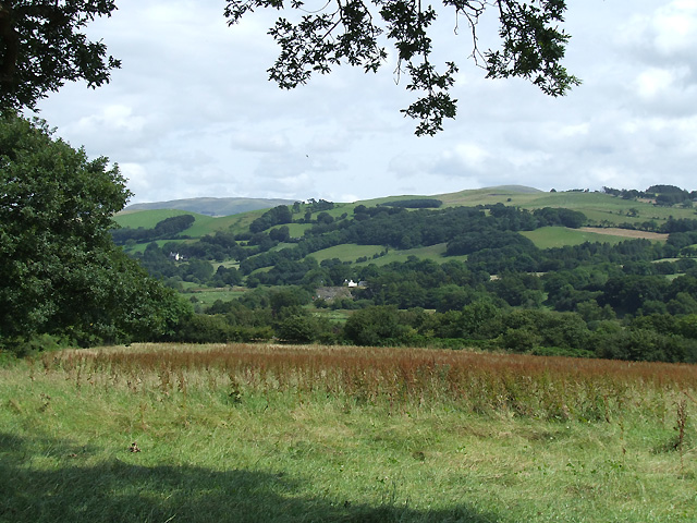 Grazing Land and Teifi Valley, Llanio, Ceredigion