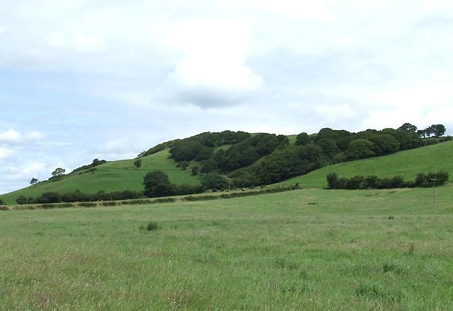 Hillside near Tregaron, Ceredigion
