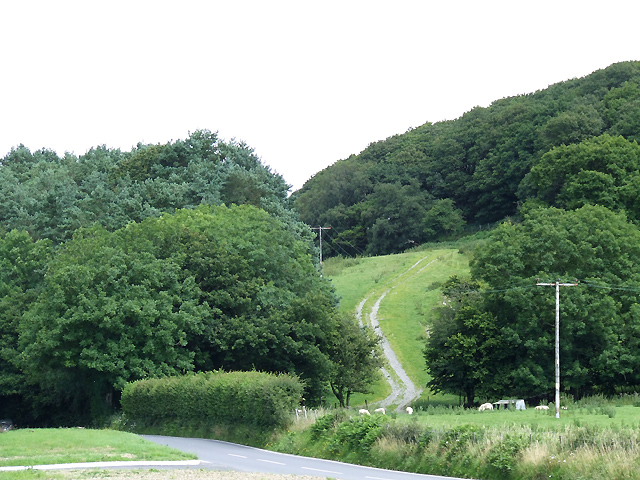Track up hillside, north-east of Tregaron, Ceredigion