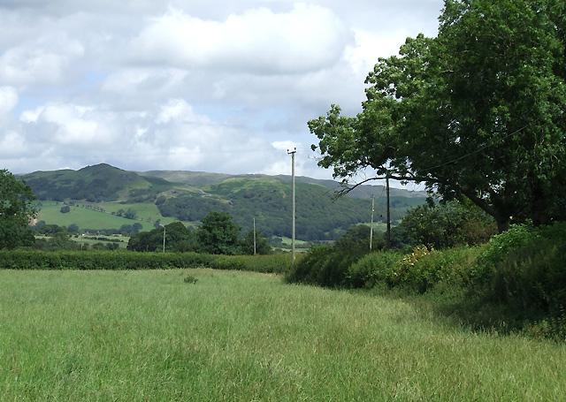 Farmland and Hillside, near Pontrhydfendigaid, Ceredigion