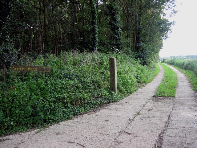 Track beside wood to Warren Barn