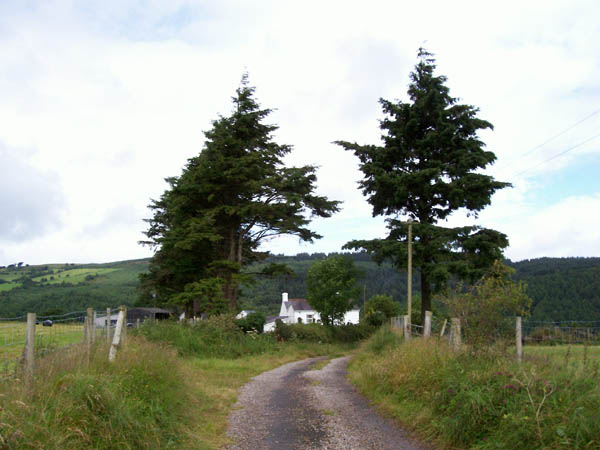 Track to Beili Home Farm