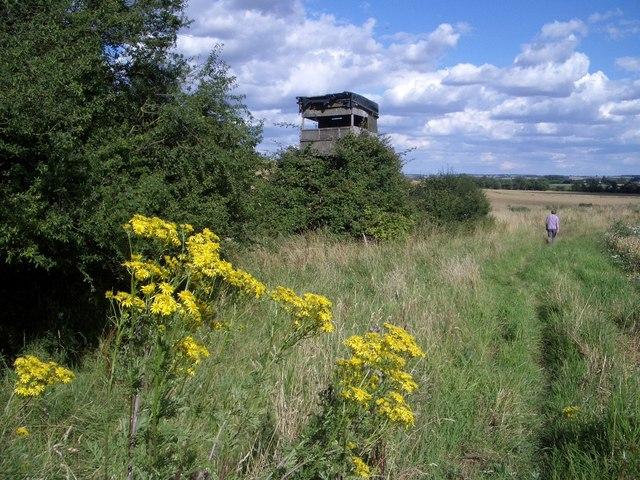 Watch Tower Near Green Side Wood