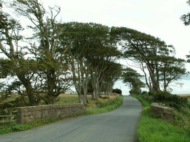 Road bridge over Dornock Burn