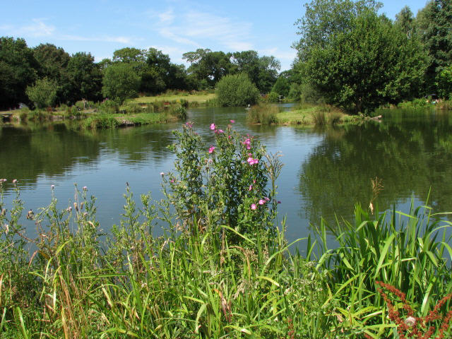 Chapel Road Fishing Lake