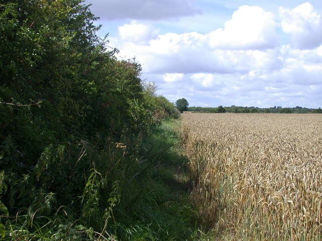 Fieldside track leading on from Chiswick End, Meldreth