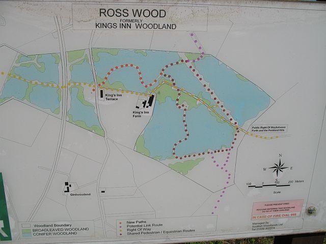 Ross Wood