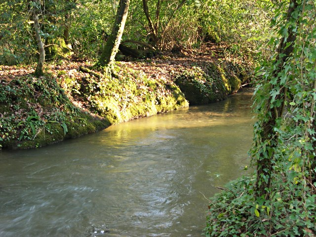 Stream near Tregavethan Manor