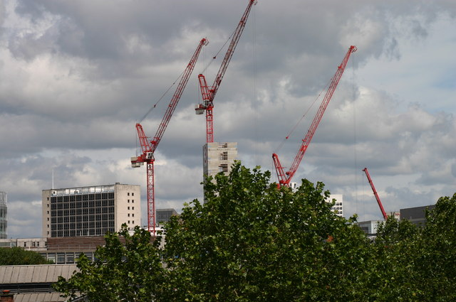 A Collection of cranes