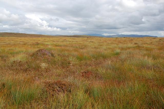 Moorland south of Ben Vic Askill