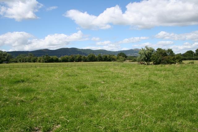 Pasture, Welland