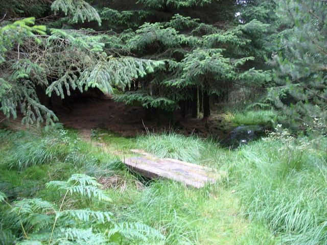 Slate slab footbridge on the forest track