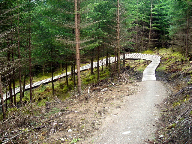 Cycle Trail in Leanachan Forest