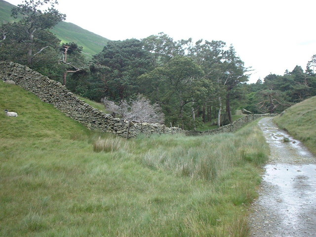 Footpath through Grisedale valley