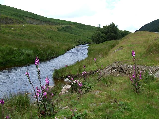 Afon Camddwr near Soar y Mynydd (looking upstream)
