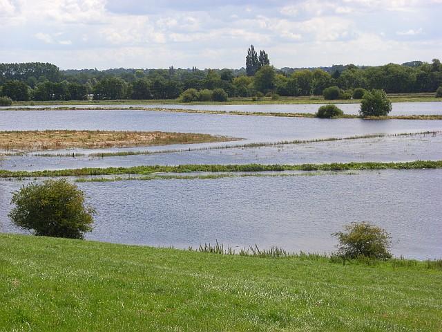 The Thames floodplain, Shiplake