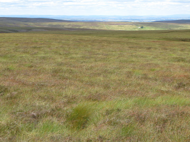 Quickcleugh Moss