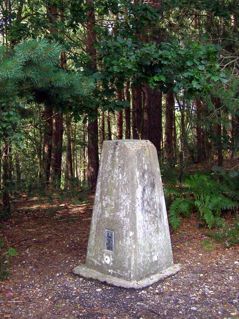 Triangulation pillar on Blackwater Hill, Town Common