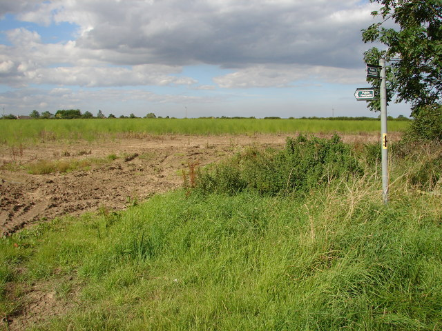 Field and Signpost
