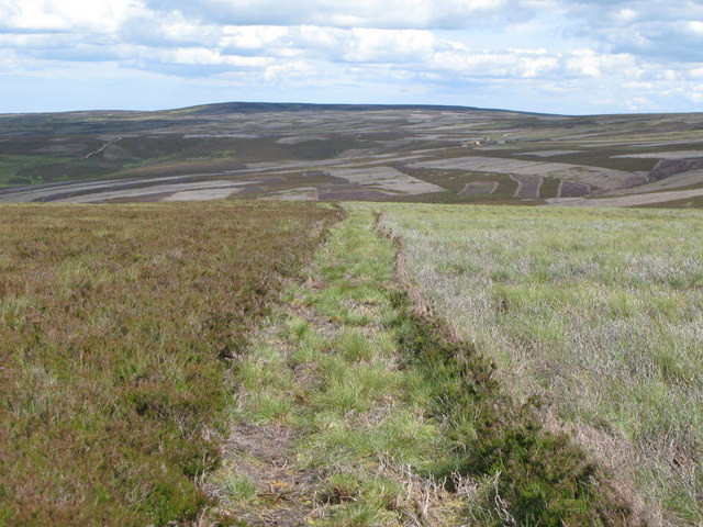 Moorland above the Espy Sikes