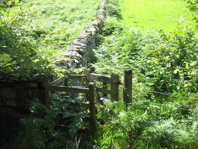 Path gate engulfed by bracken and nettles