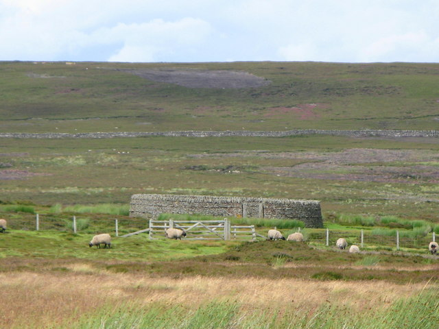 Sheepfold on Birkside Fell