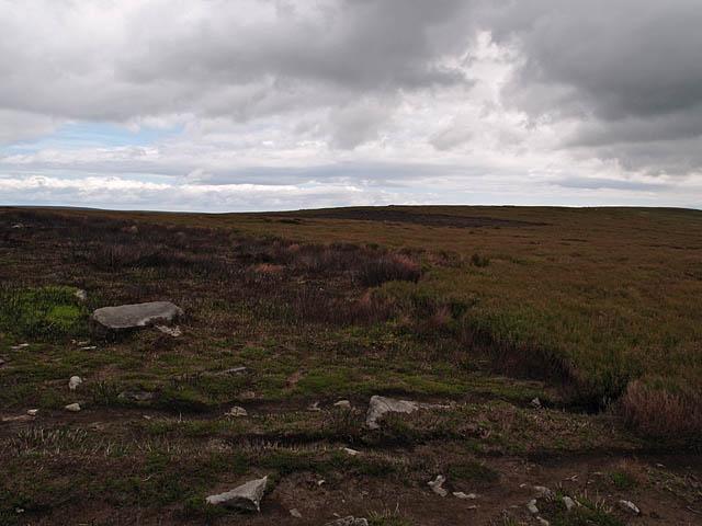 Kildale Moor