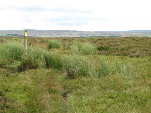 Track and marker post on Birkside Fell