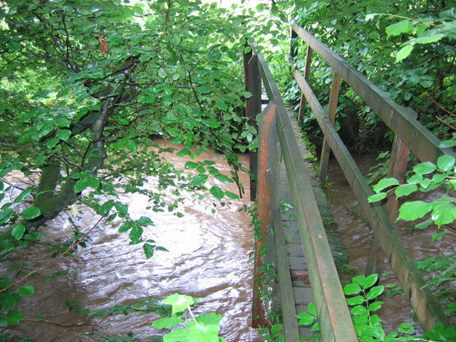 Footbridge over West Looe River