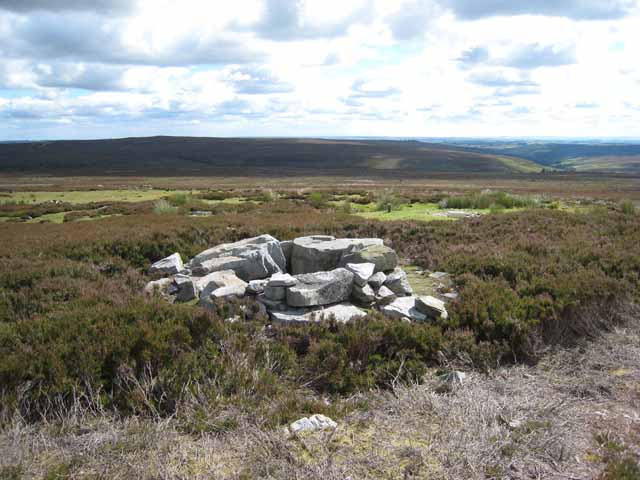 Currick on Pikestone Fell