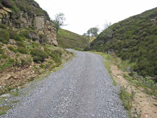 Forest road down Sharnberry Gill