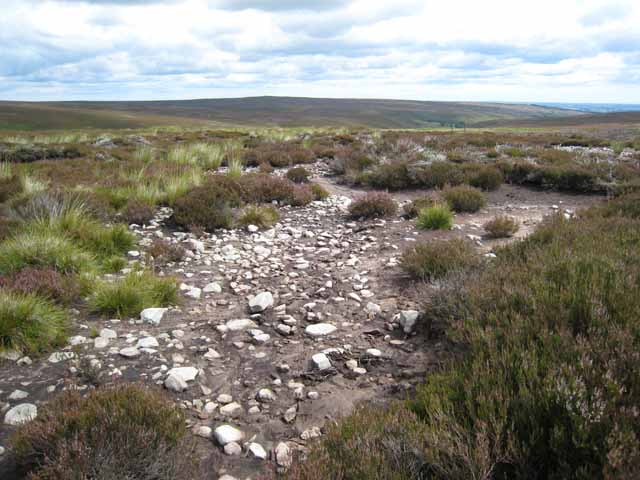 Erosion on Hamsterley Common