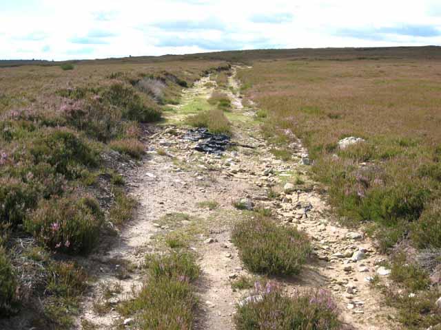 Old track on Pikeston Fell