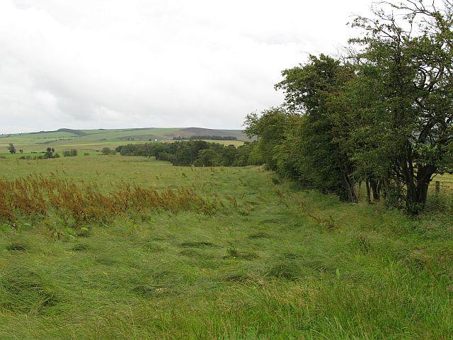 Wilderley Hill