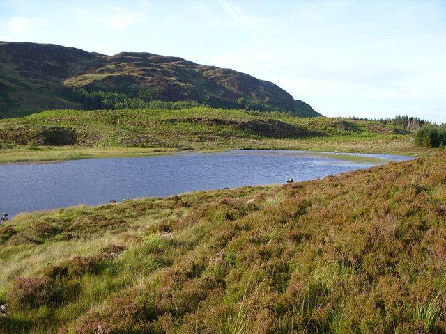 Lillie's Loch