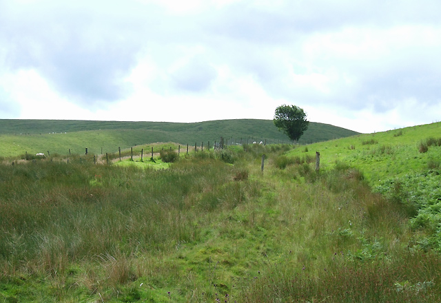 Bridleway to the Doethie, Ceredigion