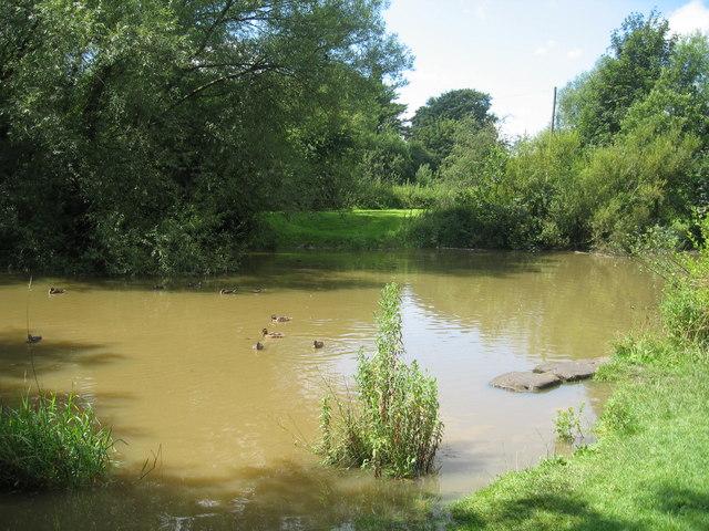 Pond, Sankey Valley